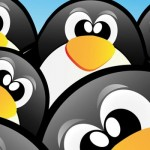 They're at It Again: Google Penguin 2.1 Update